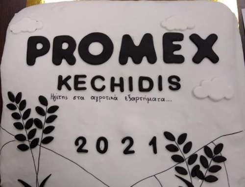 NEW YEAR PIE CUTTING PROMEX KECHIDIS 2021