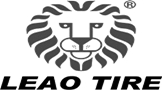 LEAO TYRES